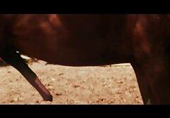 Marido fotografado como jactos de Esguichar vêm da vídeo pornô só mulheres gostosas vagina Rapada da mulher